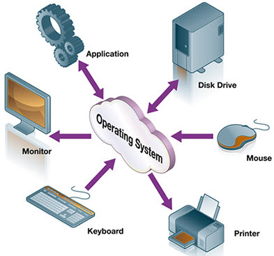 input and output devices and their functions pdf